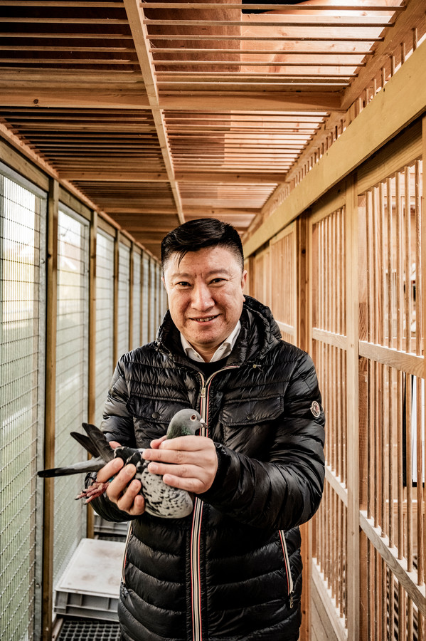 Koper Xing Wei met Nadine, die hij eerder al kocht voor 400.000 euro. Toen was het de duurste vrouwtjesduif ooit. Zijn nieuwste aankoop kon hij door corona nog niet in de armen sluiten.