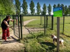 Wel of geen 'blaftaks, gemeenten hebben toch hondenvoorzieningen