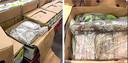 In mei 2019 werd bij fruithandel De Groot 400 kilo cocaïne tussen een lading bananen gevonden.