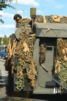 Soldaten rijden met tank door drive-in bij hamburgertent