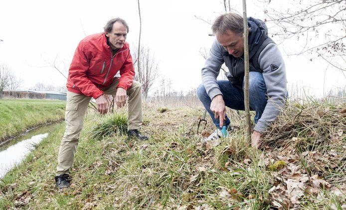 Gerrit Klaassen (links) ziet toe hoe Bert Eeftink een wilgentwijg plant langs de Regge, op het terrein van de voormalige Twentse Stoomblekerij in Goor.