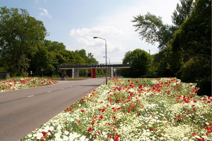 Uiteindelijk moet de kunst op het viaduct en het plaatsen van de bloemen zorgen voor een betere uitstraling en meer biodiversiteit.
