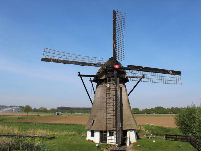 De 22 meter hoge Vervoorne molen langs de Dijkgraaf Den Dekkerweg in Werkendam wordt gerestaureerd.
