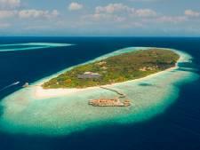 Een tropisch eiland zonder gevaarlijke muggen? Dat maakt deze wetenschapper uit Dodewaard mogelijk