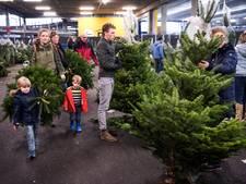 Kerstbomenkoorts: bomen zijn niet aan te slepen bij IKEA