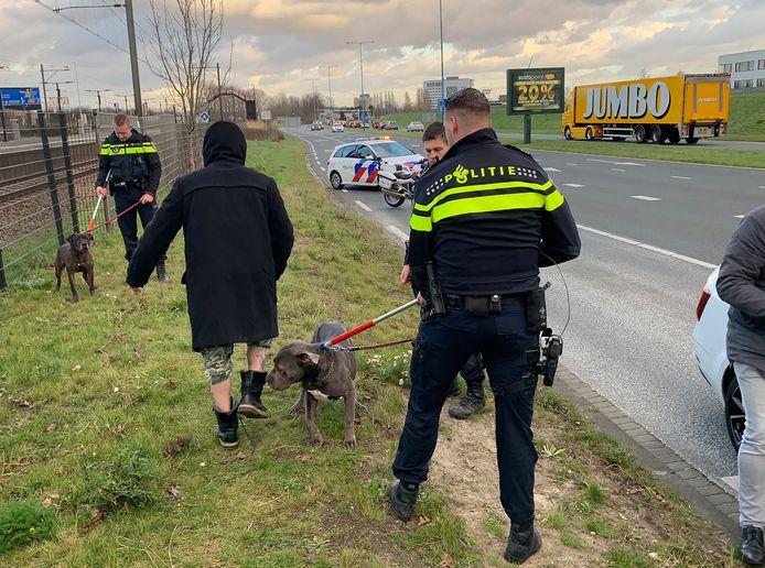 Politie vangt twee honden die meerdere malen bij een bijt incident betrokken zijn geweest.