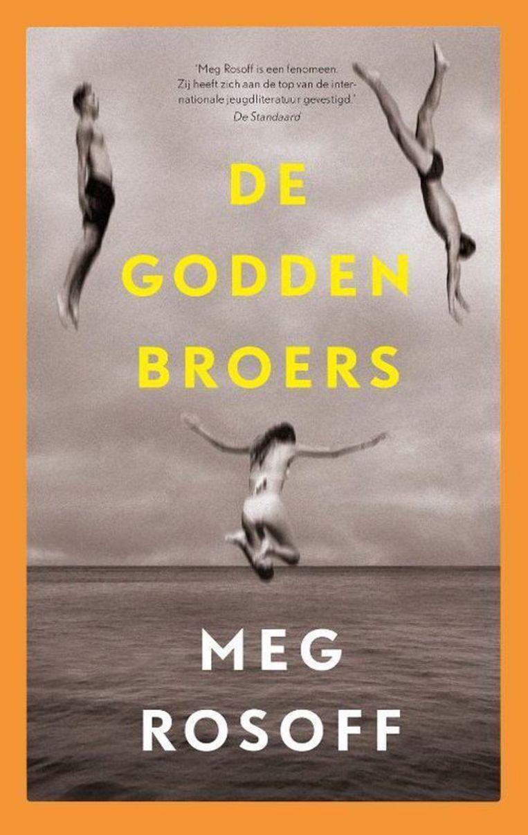 De Godden broers, Meg Rosoff. Beeld -