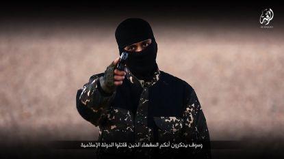 Belgische terroristendatabank schiet tekort, maar antiterreurorgaan krijgt pluim