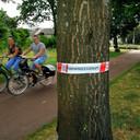 Foto uit 2017 gemaakt in de wijk Grauwe Polder in Etten-Leur waar toen eind mei de jeukrupsen gesignaleerd werden.