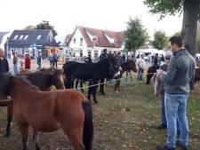 Handelaars brengen zo'n 150 pony's en één alpaca mee naar markt