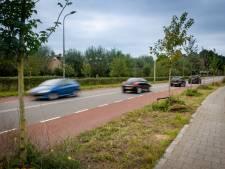 Zutphen ziet straks definitief door de bomen een duurzame stad: miljoeneninvestering tot 2050