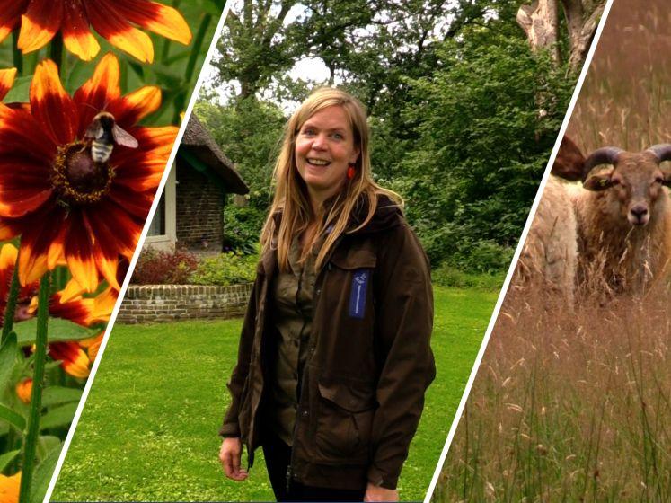 Verborgen parel: boswachter Miranda neemt je mee naar de Oude Buisse Heide