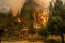 De megabrand die woedt in het noorden van de Amerikaanse staat Californië heeft de naam Dixie Fire gekregen, en is nu al de op een na grootste brand ooit in de geschiedenis van de staat.