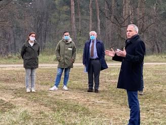 """""""Toeristisch uitpakken met onze natuur"""": Vlaanderen wil meer nationale parken zoals in buitenland"""