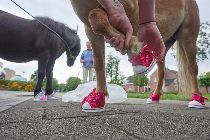 Lola en Ophra krijgen parmantige roze schoentjes aangetrokken. Foto Jeroen Appels/Van Assendelft Fotografie