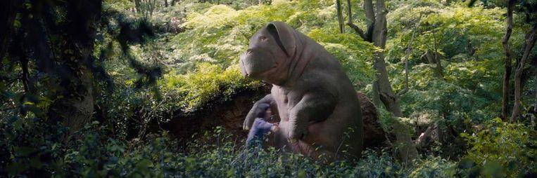 Beeld uit de film Okja. Beeld null