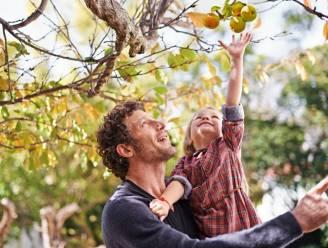 Bomen kiezen voor je tuin? Kinderspel met dit stappenplan