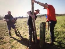 Vrijwilligers bouwen wolfwerend raster rond schaapskudde van Nunspeet