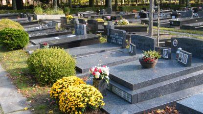 Brugse begraafplaatsen massaal bebloemd
