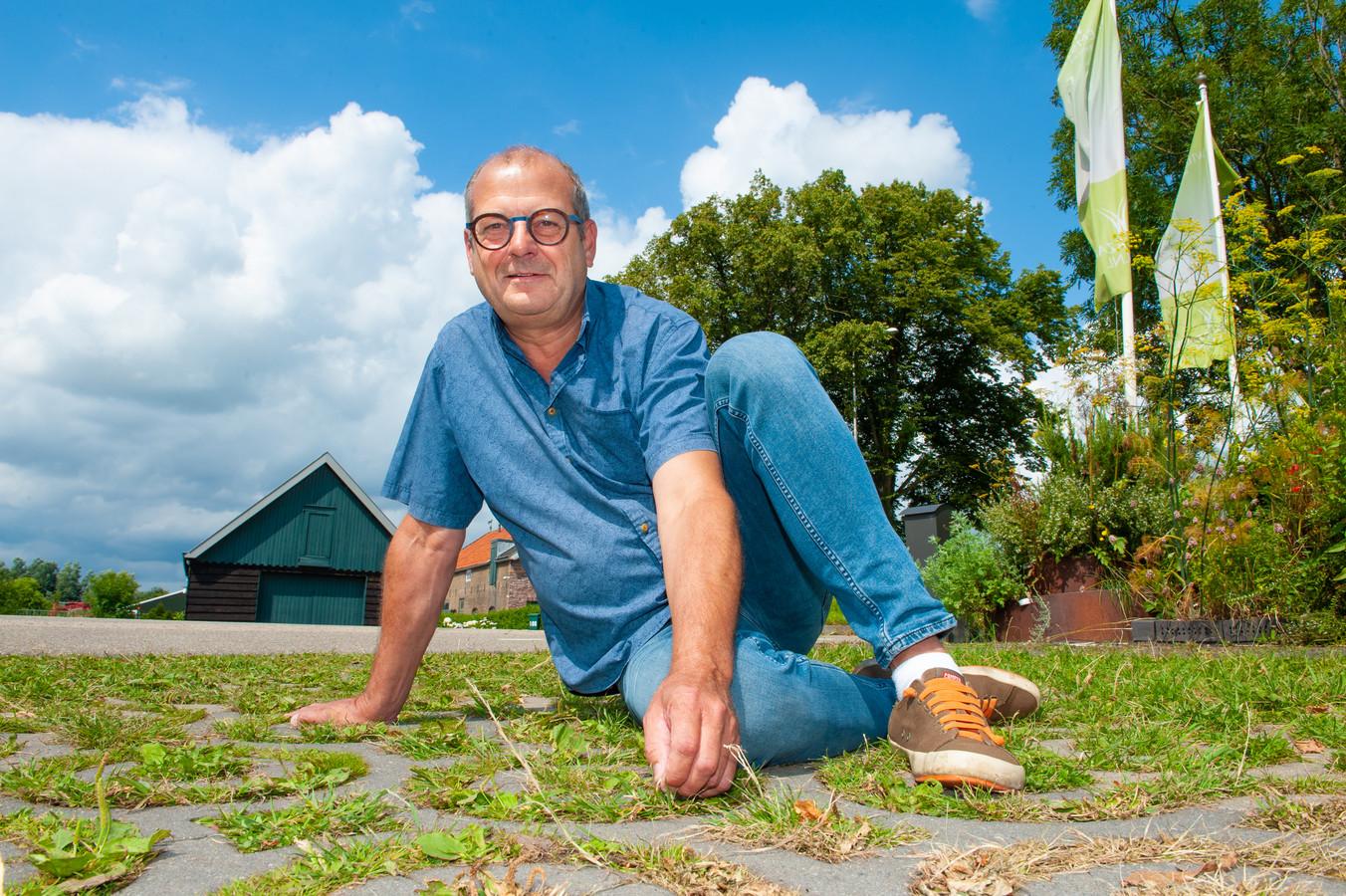 Volgens hovenier Sjaak Willemstein zouden meer mensen onkruid gewoon moeten laten groeien.