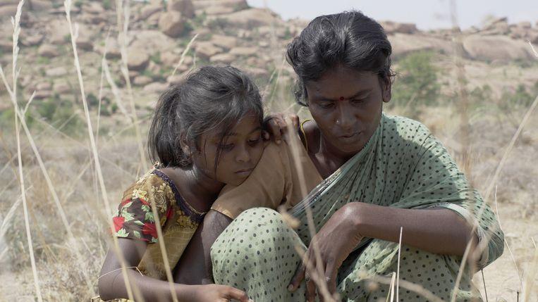 Pebbles van de Indiase regisseur P.S. Vinothraj is zondagmiddag bekroond met de Tiger Award, de belangrijkste prijs van het International Film Festival Rotterdam.  Beeld -