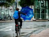 Meer geld voor inwoners Zutphen om regenwater op te gaan vangen