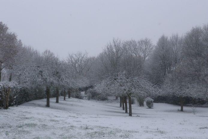 Deze ochtend zag het er veelbelovend uit en leek het landschap stilletjes te verdwijnen onder een sneeuwlaag