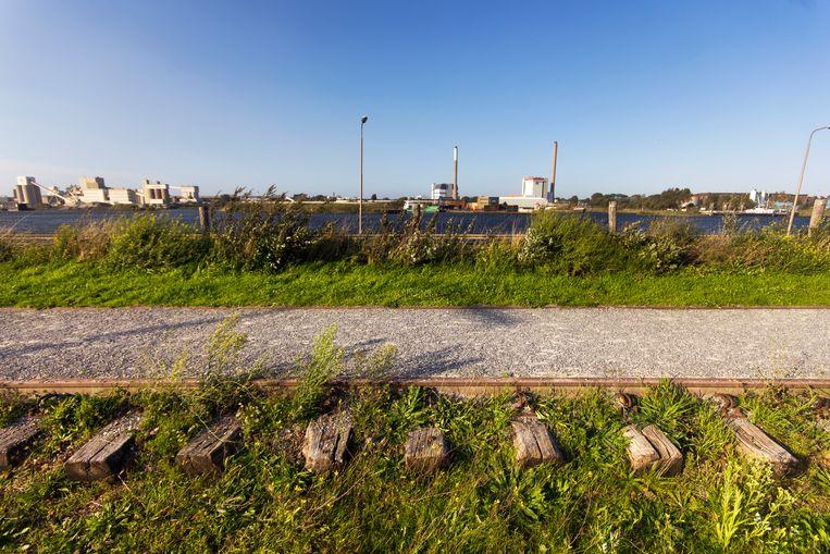 Er rijdt al twintig jaar geen trein meer naar IJmuiden, maar het spoor ligt er nog.  Beeld Sander Groen