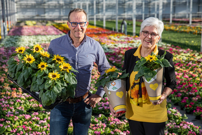 Tilly Goes (Zonnebloem afdeling Westland) en Sjaak Buijs (voorzitter van telersvereniging voor zomerbloemen) willen 100.000 zonnebloemen verkopen voor de Zonnebloem.
