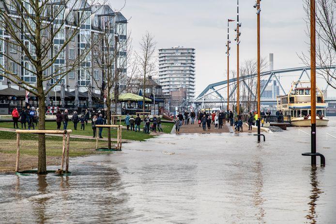 Hoogwater in de Waal bij Nijmegen, in februari vorig jaar.