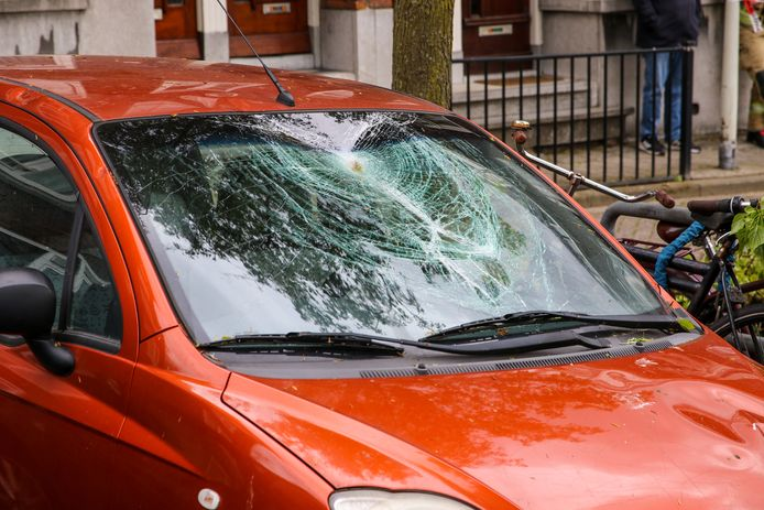 De takken belandden op de voorruit van de auto.