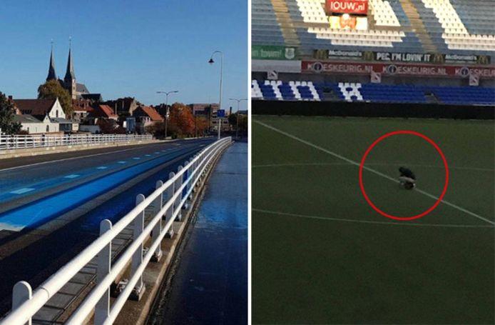 Blauwe verf op de Wilhelminabrug in Deventer en de 'middenstippoeper' in het stadion van Zwolle.