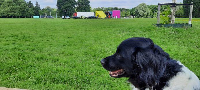 De eerste (kleine) tenten zijn opgezet voor Theaterfestival Boulevard dat op 5 augustus begint.