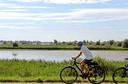 De Oostvaardersplassen, gezien vanaf een fietspad dat om het natuurgebied heen loopt.