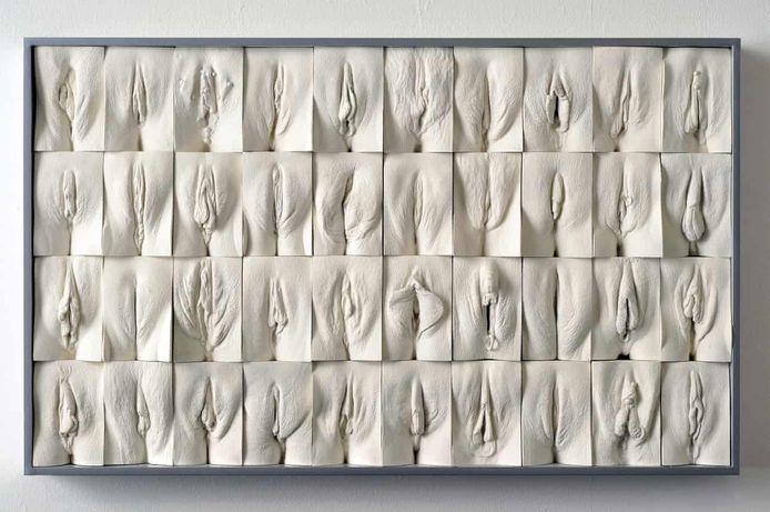 The Great Wall of Vagina, kunstwerk van Jamie McCartney.