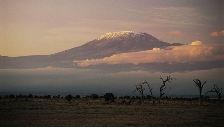 De Kilimanjaro, gezien vanuit Kenia. Beeld thinkstock