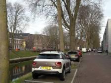 Meer bomen gerooid bij Zuid-Willemsvaart nadat moeder en baby werden geraakt door omver gevallen boom
