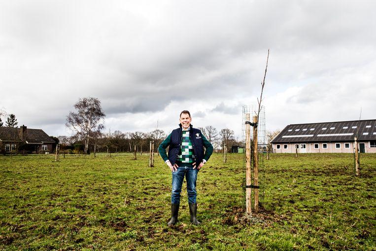 Boer Jack Verhulst bij de bomen die hij heeft geplant op zijn 50 hectare weiland in Etten-Leur, waar 95 biologische melkkoeien op grazen.   Beeld Jan Mulders