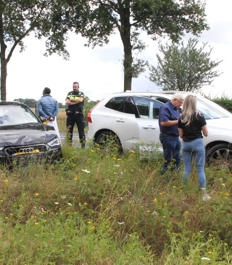 Overstekende kat zorgt voor ongeluk op N350 bij Holten