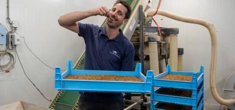 Insectenkweker Rowin ziet kansen nu EU wormen toestaat op de menukaart: 'In de gehaktbal of pizza'