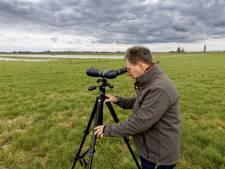 Welkom in het weidevogelwalhalla van boer Meeuwis - en dat heeft-ie helemaal zelf gemaakt