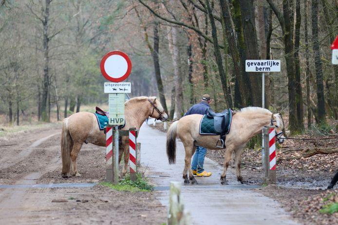 De paarden worden opgevangen aan de Hessenweg bij Ede na het incident.