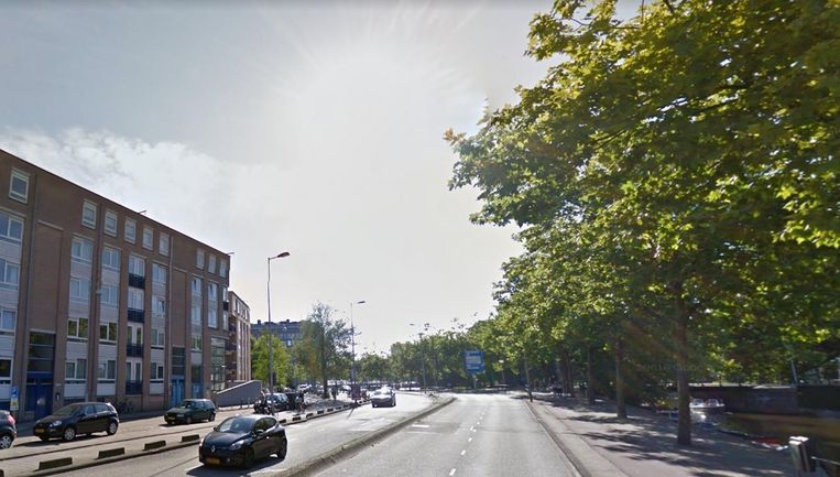 Vanwege de werkzaamheden aan de leidingen delven 37 bomen het onderspit. Zij worden gekapt Beeld Google Streetview
