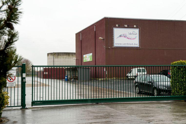 Slachthuis Verbist in Izegem, waar undercoverbeelden dierenmishandeling aan het licht brachten. Beeld Photo News