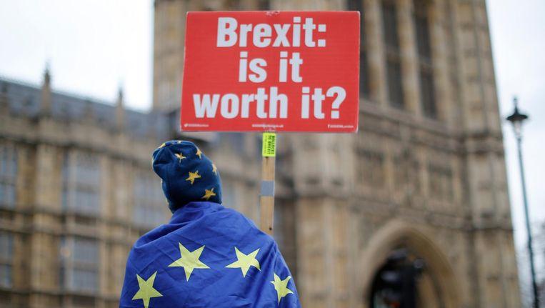 Een demonstrant voor het house of parliament in Londen Beeld anp