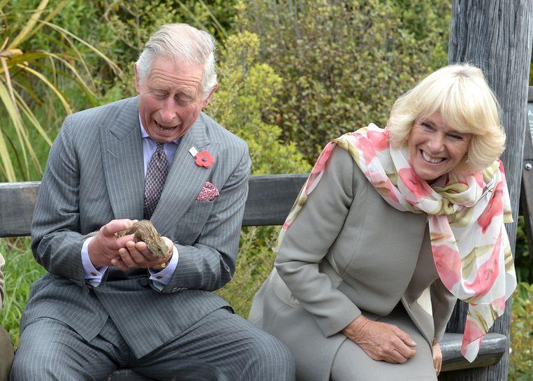 De Britse prins Charles en zijn vrouw Camilla bezoeken Nieuw-Zeeland. Prins Charles houdt een hagedis vast. Beeld Reuters