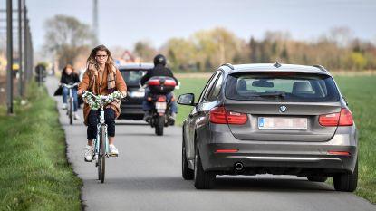 """Oppositie maakt brandhout van voorstel om van Reigersweg fietsstraat te maken: """"Straat is te smal voor én fietsers én wagens"""""""