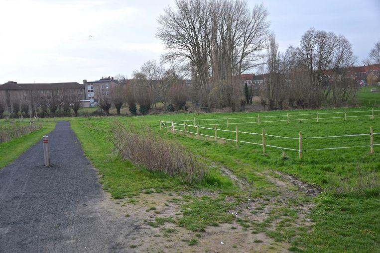 De weide in het verlengde van het voetbalveld van SC Zonnebeke ligt in de risicozone voor overstroming van de Zonnebeek.
