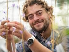 Bijenexpert waarschuwt voor bloemzaad: 'Kijk uit dat je geen carnavalsmengsel zaait'