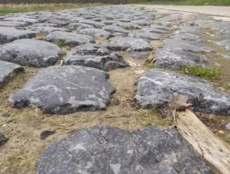 Parijs-Roubaix in Limburg: onze reporter test de acht stevigste kasseienstroken in de buurt